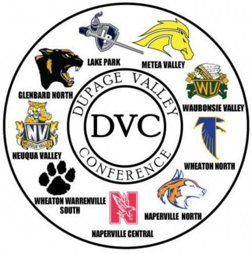 Naperville Central Track and Cross CountryDuPage Valley ...
