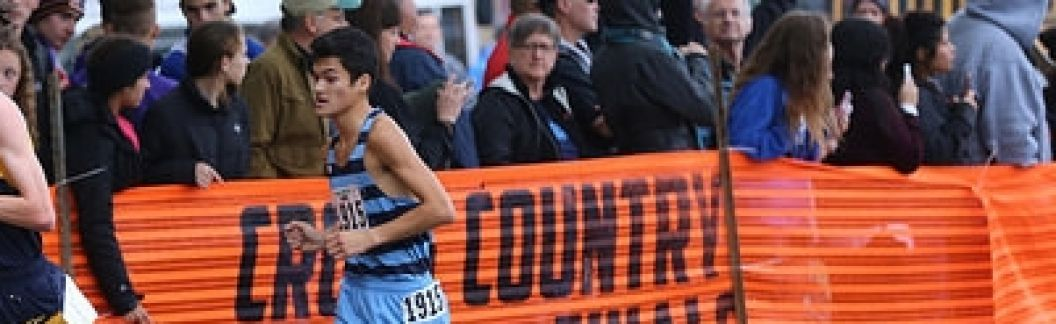 DGS XC 2017 - Stephen Pipilas All-State 24th